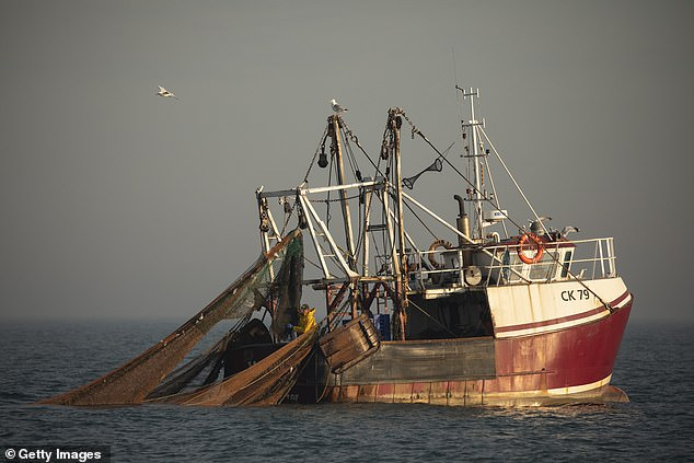 The EU is demanding continued access to UK waters for the bloc's fishing boats but Number 10 is adamant that British trawlers will be given priority. A fishing vessel is pictured working in the English Channel on August 10