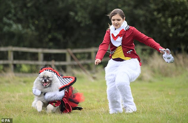 Several owners put in an energetic performance as they joined their pooches at the charity event in Yorkshire