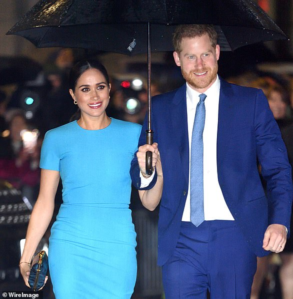 SARAH SANDS: We don¿t know what audiences will make of Harry and Meghan's documentaries of hope and inspiration but the Duke and Duchess of Sussex can afford to get professionals in to make the shows