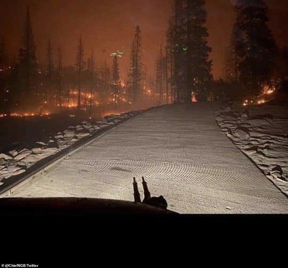 General Daniel Hokanson shared this photo Saturday night from the cockpit of a California National Guard Chinook before rescuing people trapped by the Creek Fire