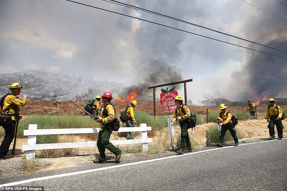 The El Dorado wildfire, which broke out on Saturday morning, was started by a gender reveal party, it has been confirmed