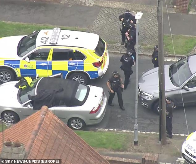 A witness said the boy was not perturbed by the armed officers who rushed to his car - which he was seen driving moments before - to arrest him. Pictured: Police stopping a convertible car. It is unclear if this car is connected to the shooting