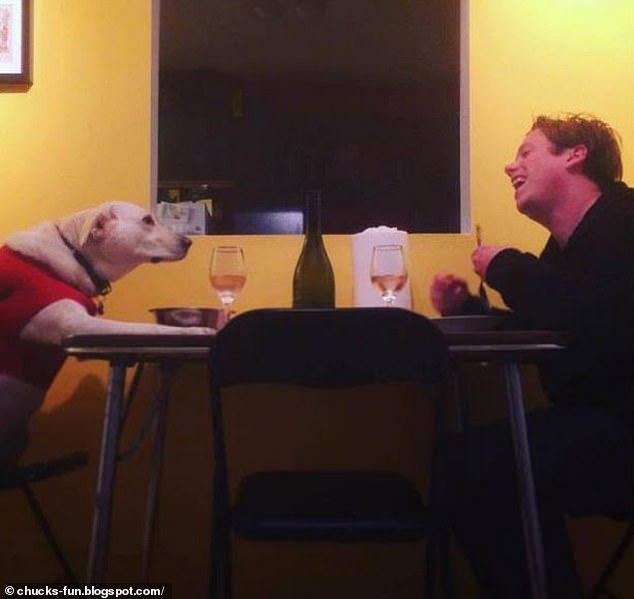 A dog's dinner! A man, whose location is unknown, was snapped sharing a meal and jokes with his canine companion