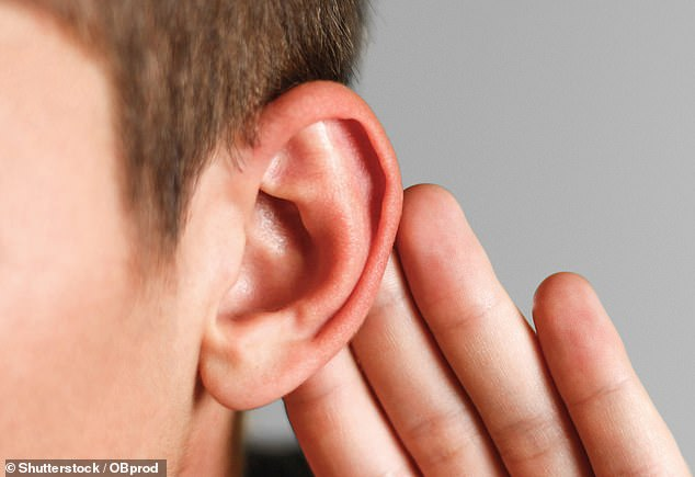 Hearing loss isn't just something that strikes in old age: you may be surprised to learn that more than 40 per cent of the over-50s are affected [File photo]