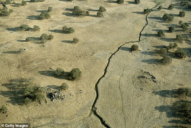 Scientists typically focus on movement in the top of Earth's crust, anticipating that its motion in turn rejiggers the rocks deep below. Pictured is an aerial view of a surface crack along the San Andreas Fault south of San Francisco