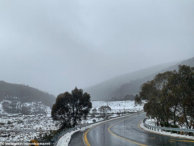 The Bureau of Meteorology said Thredbo will experience the worst of the conditions with wind gusts of up to 120km/h already being recorded in the alpine region (pictured)