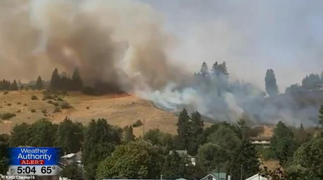 A wildfire has destroyed an estimated 70-80 per cent of the homes in Malden, Washington, it emerged on Monday