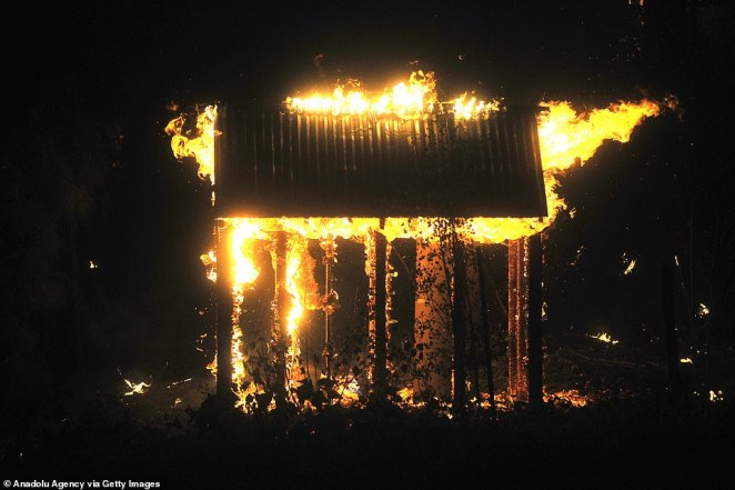 Some outdoor shelters near Shaver Lake were engulfed with flames (pictured) as authorities ordered people to evacuate