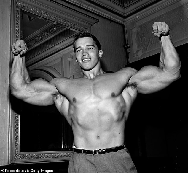 Legendary: Schwarzenegger is widely considered among the most important figures in the history of bodybuilding; he's pictured in 1968