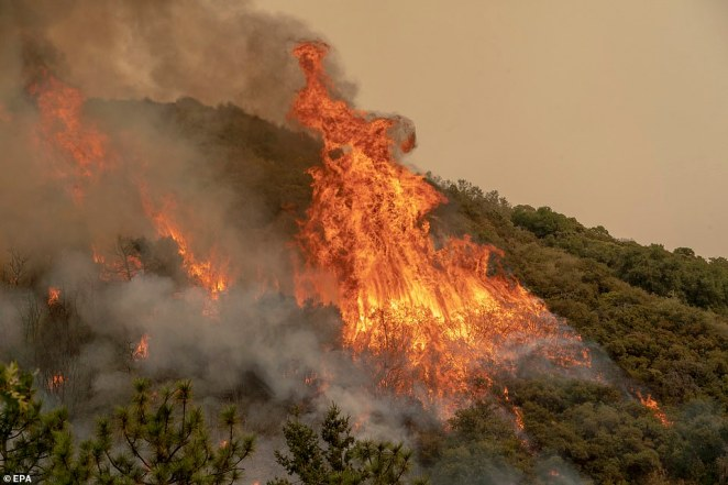 Fire officials have confirmed that the El Dorado wildfire was started by a gender reveal photoshoot on Saturday morning
