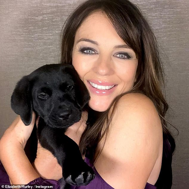Paw-fection! Elizabeth Hurley was delighted to show off the new addition to her family on Monday, as she shared a series of sweet snaps to her Instagram page