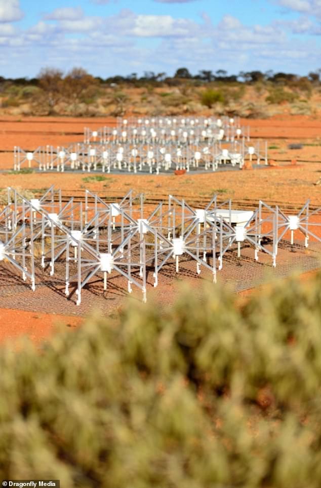 Dipole antennas of the Murchison Widefield Array (MWA) radio telescope in Mid West Western Australia