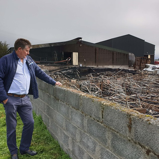 Farm owner Trevor Shields (above) has been left 'devastated' after 2,000 pigs were killed at a fire on his farm in Kilkeel, County Down, shortly before 9pm on Monday