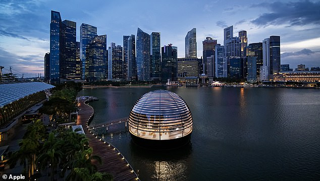 Apple is opening its first-ever floating Apple store September 10 in Singapore's Marina Bay. The company released new photos of the interior, which includes rows of trees, streaming sunlight and an underwater boardroom