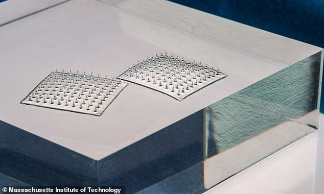 The silk microneedle arrays seen here could head off outbreaks but also prevent consumers from throwing out food that is still safe to eat.Americans throw out nearly 40 million tons of food every year, much of which is still perfectly edible
