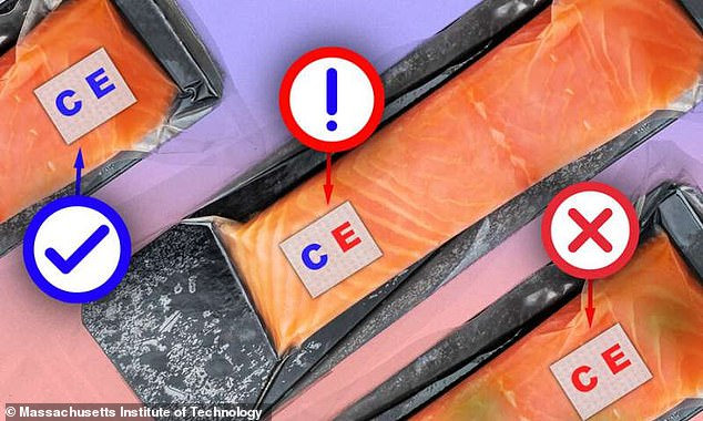 Sensors developed at MIT changed from blue to red in the presence of E.coli and spoilage in store-bough fish. One kind of bioink in the sensors is sensitive to the presence of bacteria, while another detects changes in pH