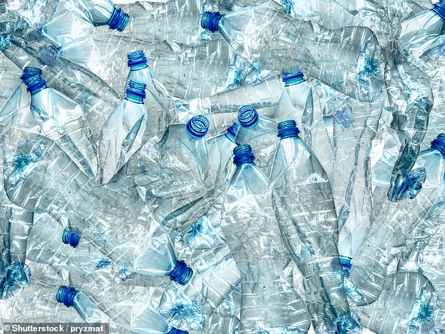 The new legislation will ban plastic items progressively and target smaller items like cutlery and straws before moving on to takeaway containers and bottles (plastic bottles pictured)