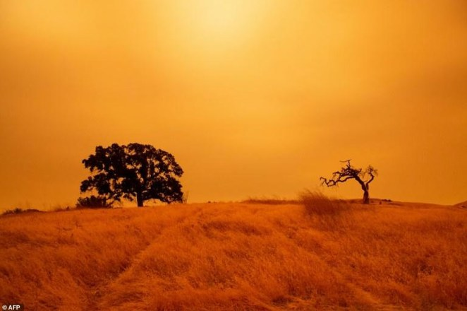 An orange sky filled with wildfire smoke hangs above hiking trails at the Limeridge Open Space in Concord, California