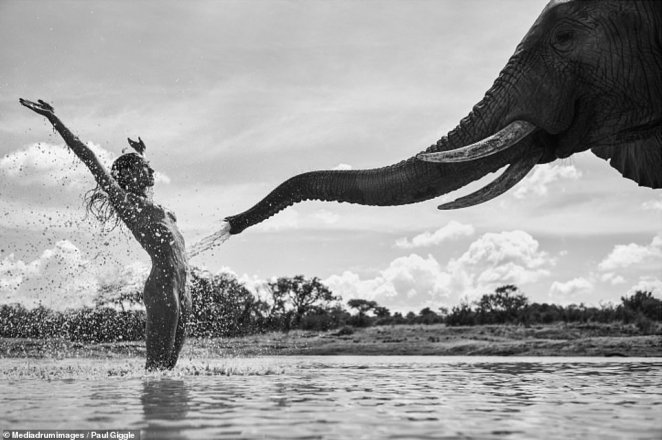 'African Shower' by Paul Giggle as part of his series '12 Natural Wonders.' Giggle travels to a different country each year to capture 12 images to be published in a book, as well as to be exhibited around the world