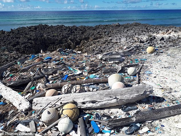Plastic waste is washing in from around the world.Alabra is the second-largest coral atoll in the world - with an are of 150 sq miles - in 2016 the idyllic paradise lost half of its hard coral cover due to bleaching
