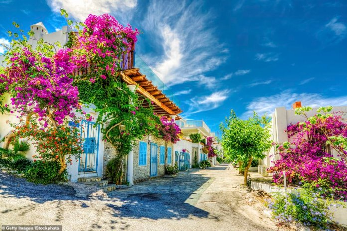 Bloom time: The Bodrum peninsula is packed with charming streets. It is Turkey's favourite resort area
