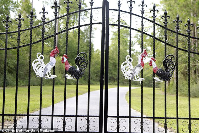 Even the steel black gates at the entrance to his remote ranch pay homage to his passion with four rooster figurines on the front