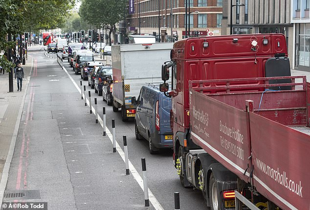 As these pictures show, hardly any cyclists are actually using the new lanes on the Marylebone Road ¿ perhaps because the build-up in traffic has caused too much pollution for them to risk it