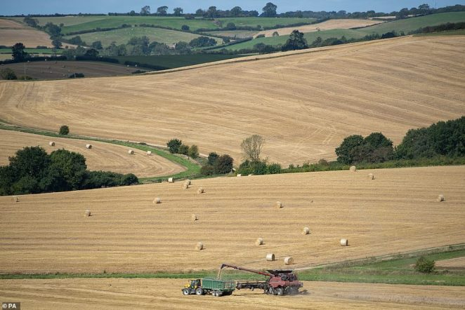 A combine harvester cuts the last of the wheat in a field near Ridlington in Rutland in front of a stunning view of bales of hay and hills