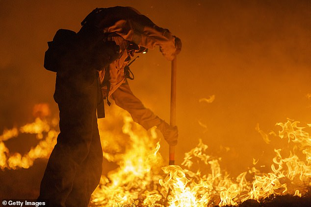Los Angeles County firefighters, using only hand tools, keep fire from jumping a fire break at the Bobcat Fire in the Angeles National Forest on Friday in Monrovia