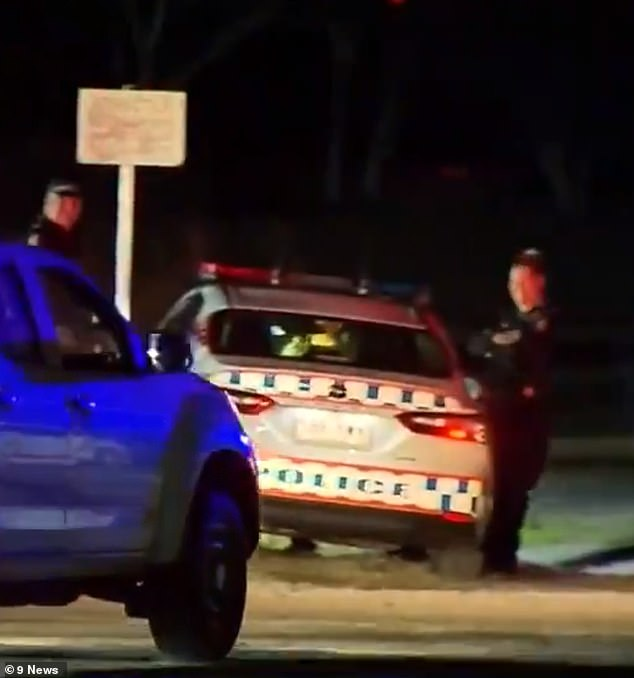 Emergency crews were called to O'Callaghan Park in Zillmere at about 5.35pm on Sunday following a fight between two African gangs