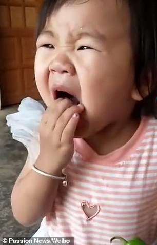 As she took a small bite of the chilli, the child started coughing fiercely and immediately spat out the pepper