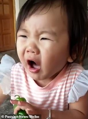 This is the adorable moment a little Chinese girl discovered her dislike for green chillies