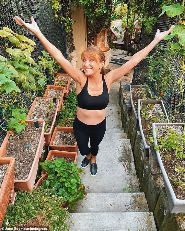 Dedicated to the upliftment of the people: Last Saturday, Dame Jane Seymour launched her impressively fitted 5 feet 3 inch figure in a post to celebrate National Incentive Day