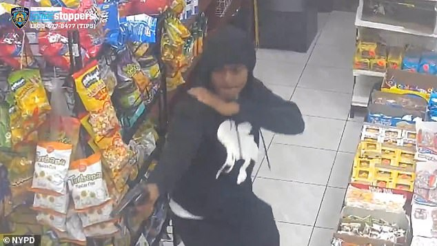 The hooded assailant was videoed inside Wally's Deli along East 223 Street in Wakefield shortly after 9pm on September 8