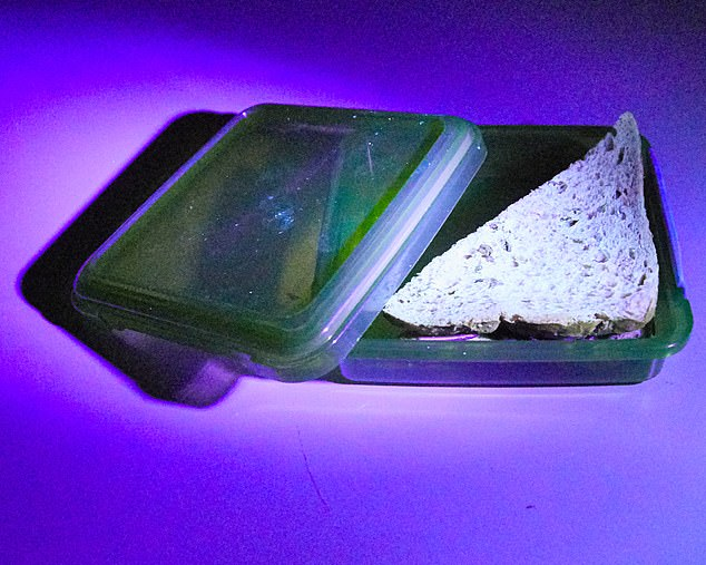QUICK RINSE: There are traces of ¿germs¿ on my sandwich box after just rinsing my hands