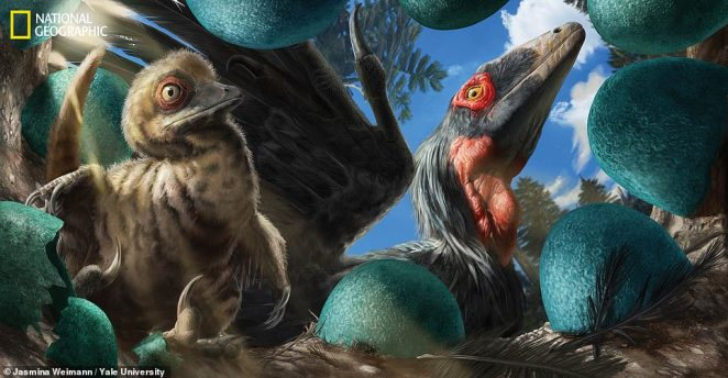 Researchers are now using techniques from medicine, chemistry, engineering and physics to expose the secrets of these prehistoric creatures. Using chemistry, a team determineddeinonychus eggshells (artist impression) were a blueish color because the dinosaur laid them in open-air nests