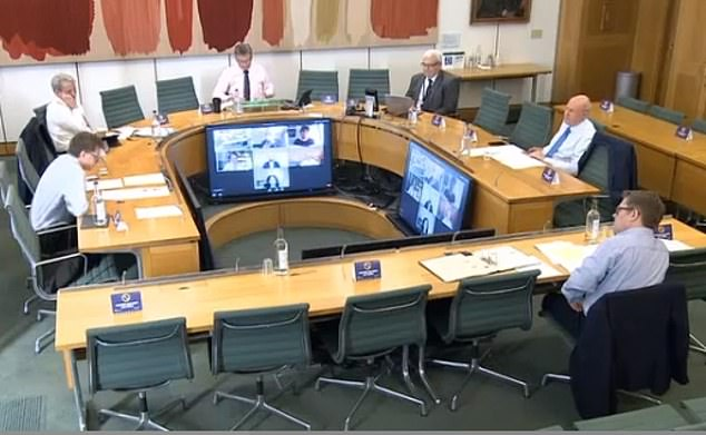 She appeared via video-link to the Commons' Digital, Culture, Media and Sport Committee