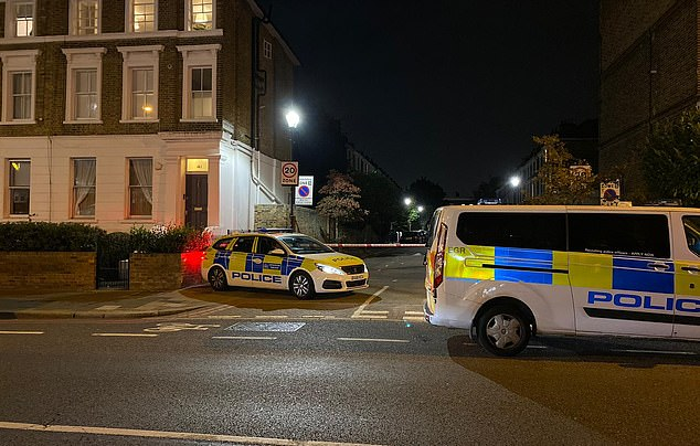 The victim was found with a number of stab wounds and died at the scene on Stockwell Road despite paramedics' best efforts