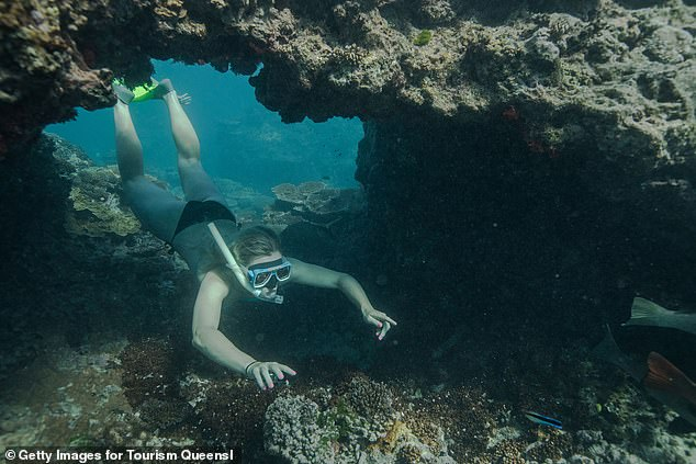 Qantas recommend passengers wear a face mask for the journey, though passengers will not be able to exit the flight to sample the tourist attractions in person. Pictured: a swimmer on the Great Barrier Reef in Queensland