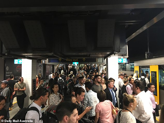 In the year to June 2019, Australia had a net annual immigration rate of 239,600 when the number of people leaving was subtracted from the tally of new arrivals. Pictured is a crowded Wynyard train station before the COVID-19 pandemic