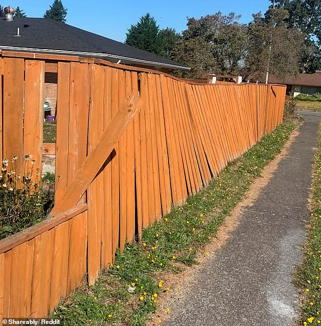 Another individual discovered their contractors had done a poor job of installing their fence when a powerful storm hit