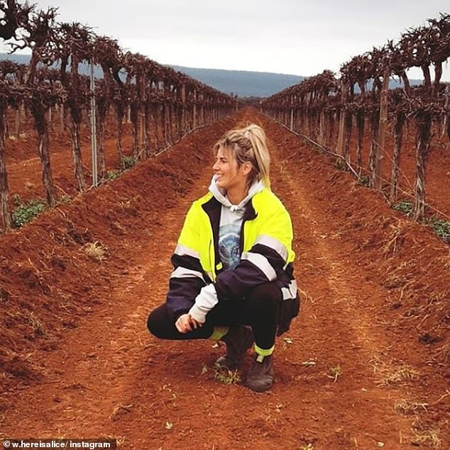 With backpacker workers (pictured) continuing to leave the country due to the COVID-19 crisis, data has found jobless Australians refuse to move to regional areas for work