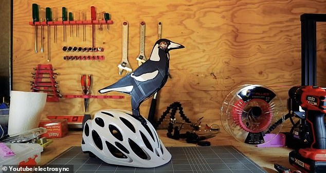 He 3D printed twigs, a pair of eyes, cable ties, and a fake magpie (pictured) before cycling through a notorious swooping spot and tallying how many times he was attacked while wearing each item