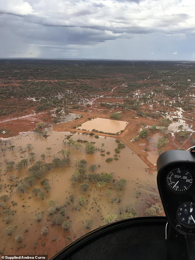 Stunning images show inland seas forming in the Australian outback due to torrential rains, as forecasters warn a very wet summer is on the way
