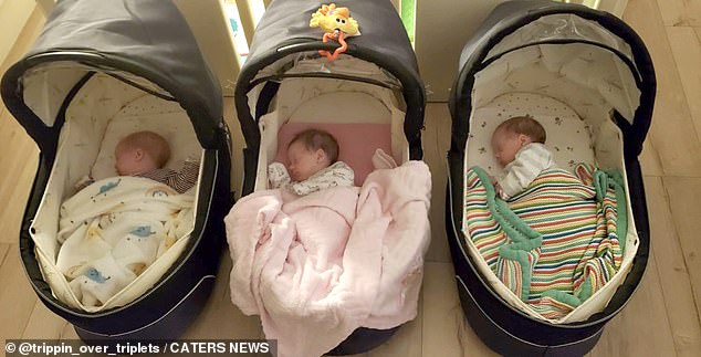 Molly, Chloe and Megan in their carriers at home in Dublin. The triplets are doted on by their family
