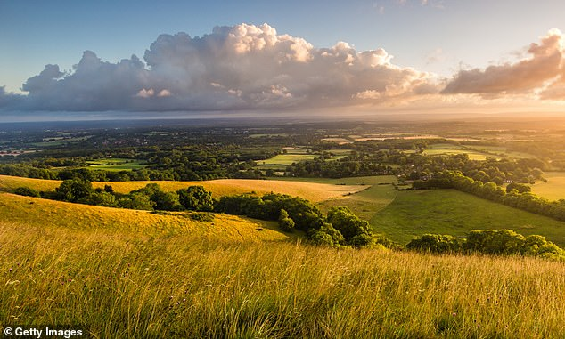 The new area earmarked for protected status is equivalent to the size of the Lake District and South Downs National Parks combined. Pictured: South Downs (file photo)