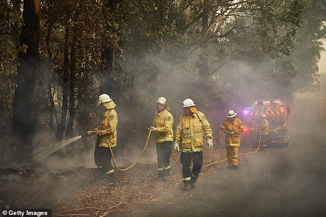 Firefighters were not happy with the decision after they had been seeking their annual 2.5 per cent annual pay rise (Pictured: RFS crews battling fires in Kangaroo Valley on January 5)