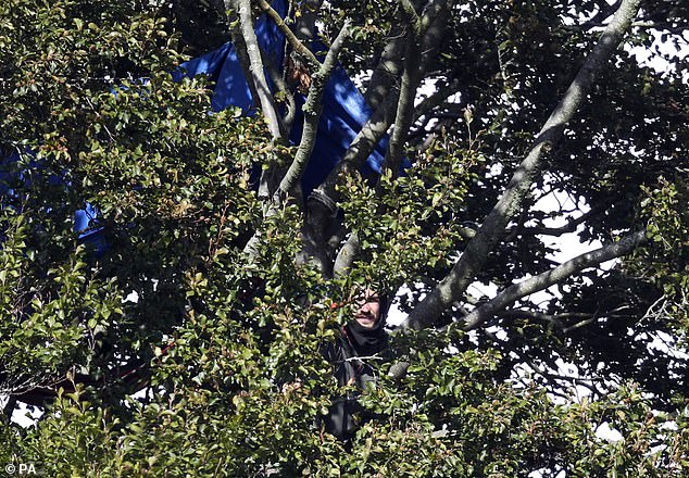 Protestors who are camped in trees they are trying to stop being felled at Jones' Hill Wood, near Aylesbury Vale in Buckinghamshire, one of the woodlands which is due to be affected by the building of HS2