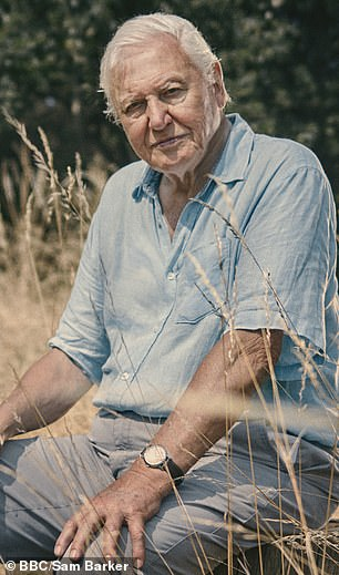 Sir David (pictured) previously voiced concerns about humanity's need to overhaul their relationship with nature during talks with the Duke of Cambridge in Switzerland last year