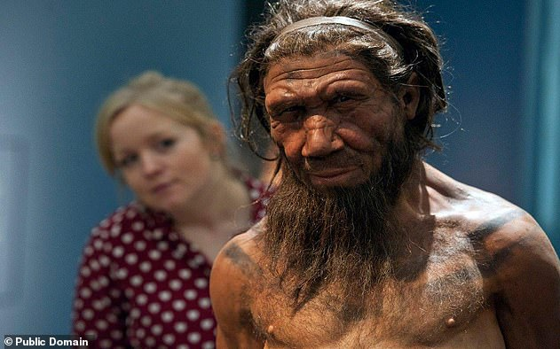Researchers compared the DNA of 2,200 Covid-19 patients from around the world with the genomes of three Neanderthals that lived 50,000, 70,000 and 120,000 years ago. They found people with neanderthal versions of the genes OAS1, OAS2 and OAS3 were less likely to develop severe symptoms after infection with the coronavirus